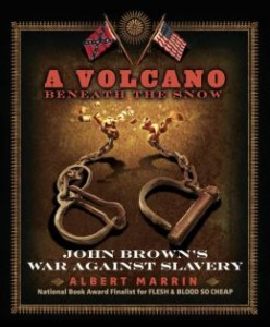 Review of A Volcano Beneath the Snow: John Brown's War Against Slavery