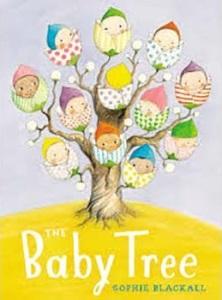 blackall_baby tree