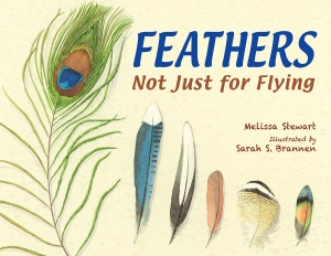 Feathers | Class #4, 2016