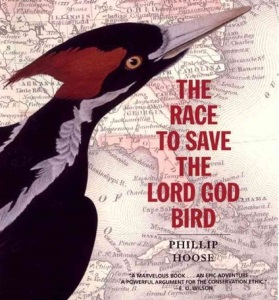 The Race to Save the Lord God Bird: Phillip Hoose's 2005 BGHB Nonfiction Award Speech