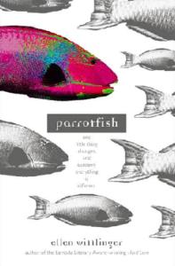 wittlinger_parrotfish update