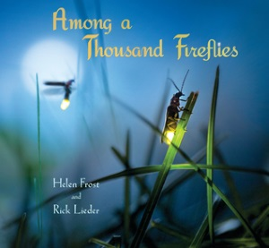Review of Among a Thousand Fireflies