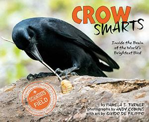 turner_crow-smarts