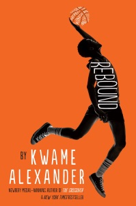 Review of Rebound