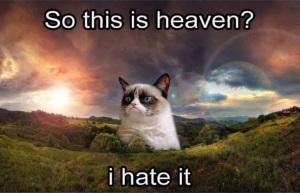 R.I.P., Grumpy Cat