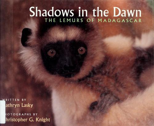 Shadows in the Dawn