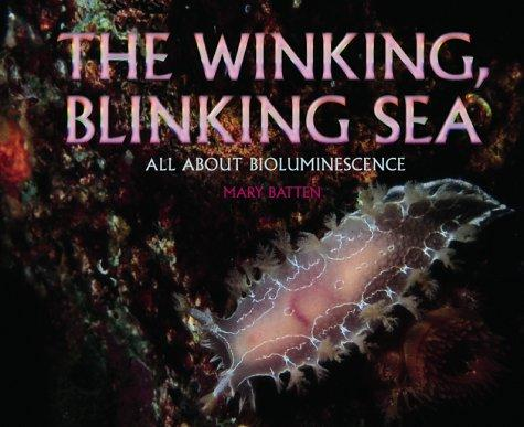The Winking, Blinking Sea