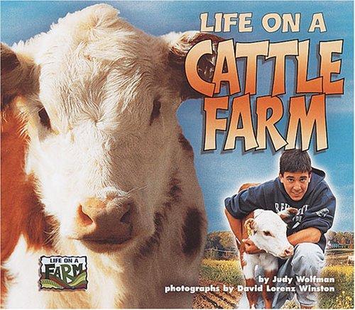 Life on a Cattle Farm