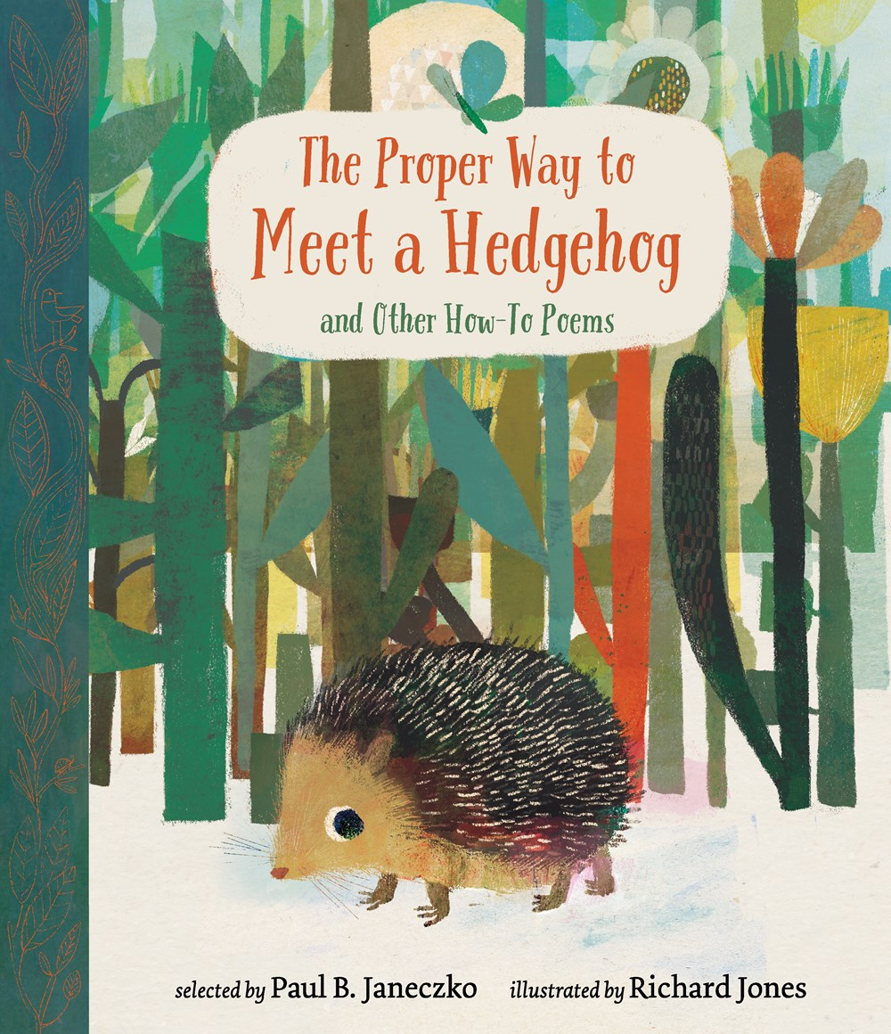The Proper Way to Meet a Hedgehog
