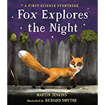 Fox Explores the Night