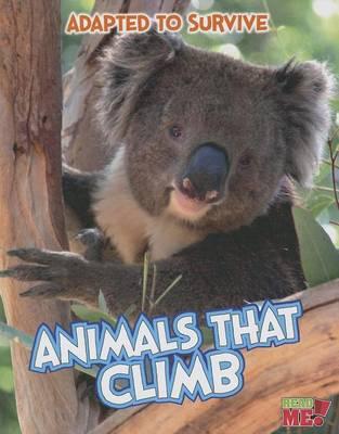 Animals That Climb