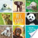Hey, Baby!