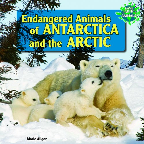 Endangered Animals of Antarctica and the Arctic