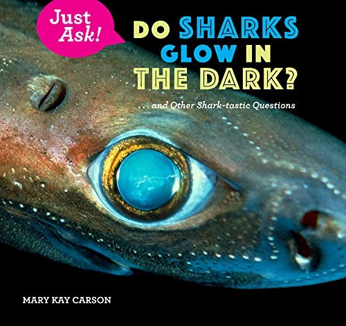 Do Sharks Glow in the Dark?