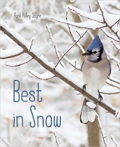 Best in Snow