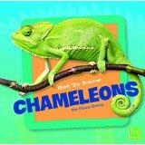 Get to Know Chameleons