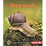 Slimy Snails