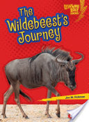 The Wildebeest's Journey