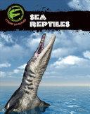 Sea Reptiles