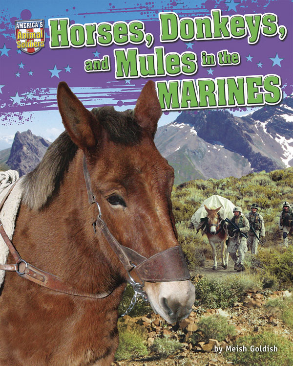 Horses, Donkeys, and Mules in the Marines
