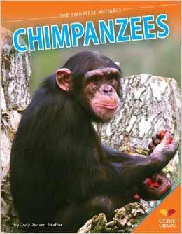 Chimpanzees