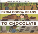 From Cocoa Beans to Chocolate