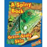 A Spiny Back and Green Scaly Skin