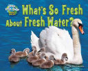 What's So Fresh about Fresh Water?