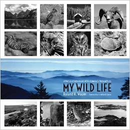 My Wild Life: A Memoir of Adventures Within America's National Parks