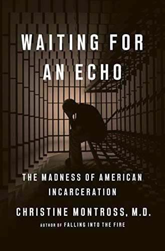 Waiting for an Echo: The Madness of American Incarceration