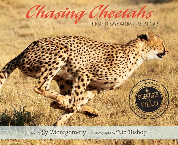 Chasing Cheetahs: The Race to Save Africa's Cat