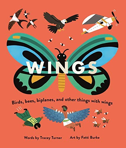 Wings: Birds, Bees, Biplanes, and Other Things with Wings