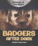 Badgers After Dark
