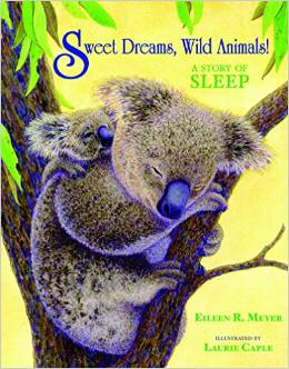 Sweet Dreams, Wild Animals!: A Story of Sleep