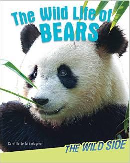 The Wild Life of Bears