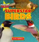 Superstar Birds