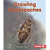 Crawling Cockroaches