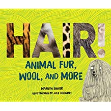 Hair!: Animal Fur, Wool, and More