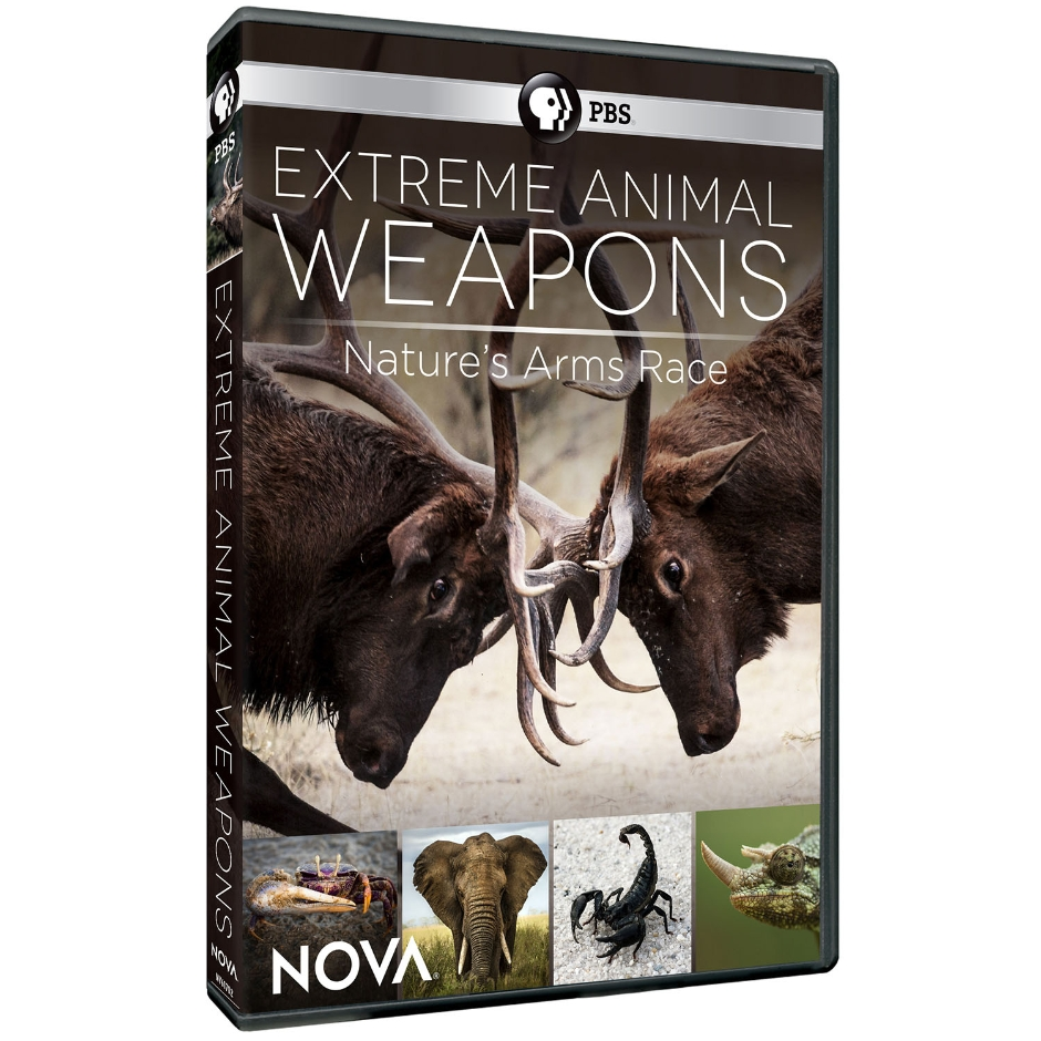 Extreme Animal Weapons: Nature's Arms Race