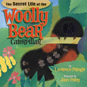 The Secret Life of the Woolly Caterpillar