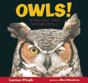 Owls! Strange and Wonderful