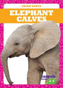 Elephant Calves