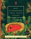 Why Evergreens Keep Their Leaves