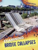 Examining Bridge Collapses