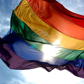 LGBTQ Diversity: Building a Collection for Independent Readers