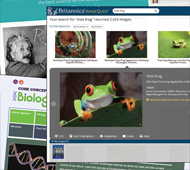 Best Databases: Watch science spring into action with these must-have resources