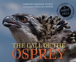 NFic-MiddleHS-Patent-The Call of the Osprey