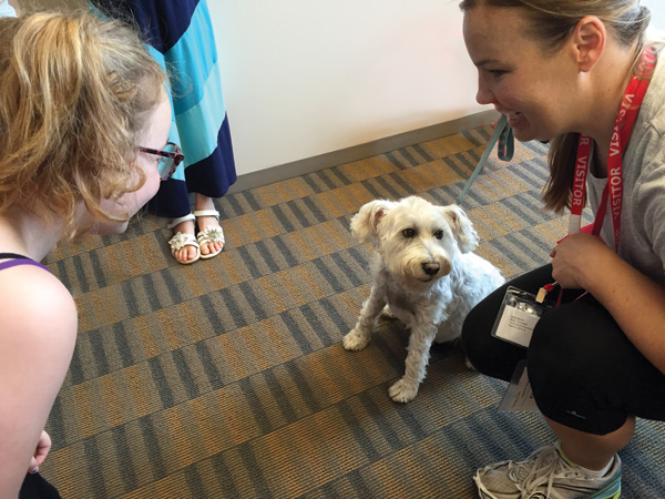 A therapy dog visits Chicago's Francis W. Parker School.