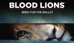 Blood Lions: Bred for the Bullet | SLJ DVD Reviews