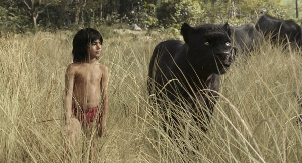 Mowgli (newcomer Neel Sethi) and Bagheera (voice of Ben Kingsley) in The Jungle Book (All photos: Walt Disney Studios Motion Pictures)